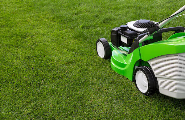 Outdoor shot of green lawnmower