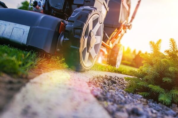 Lawn Mowing Closeup Photo. Professional Landscaping Works. Grass Cut.