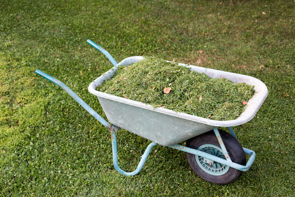 Some Great Things about Composting Grass Clippings