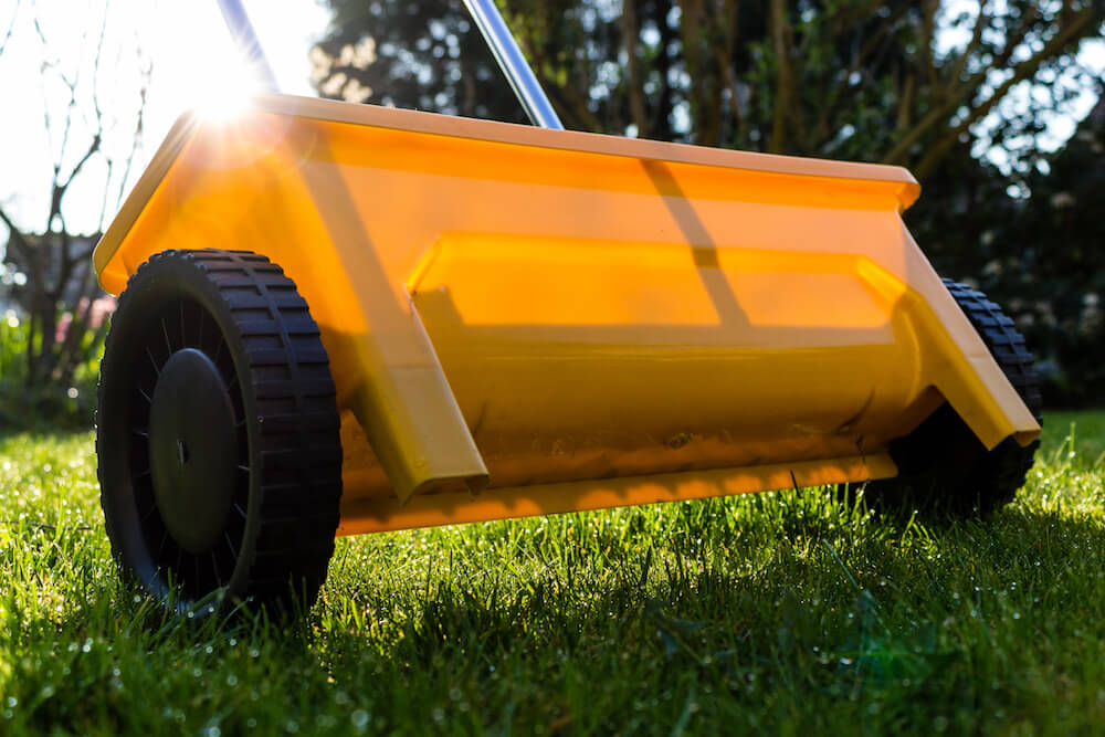 Recommendations on Care and the Best Time to Fertilize Lawn in Florida