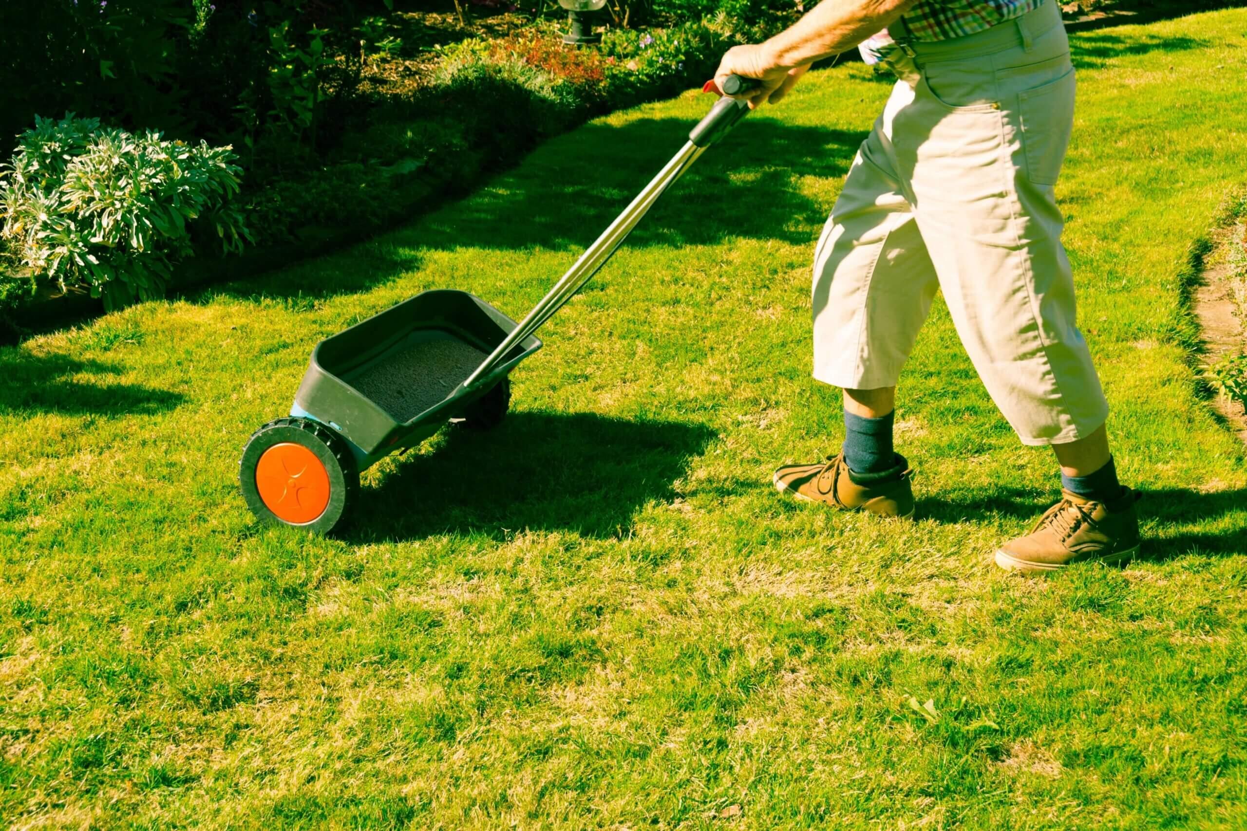 Responsible Fertilization of your Florida Lawn