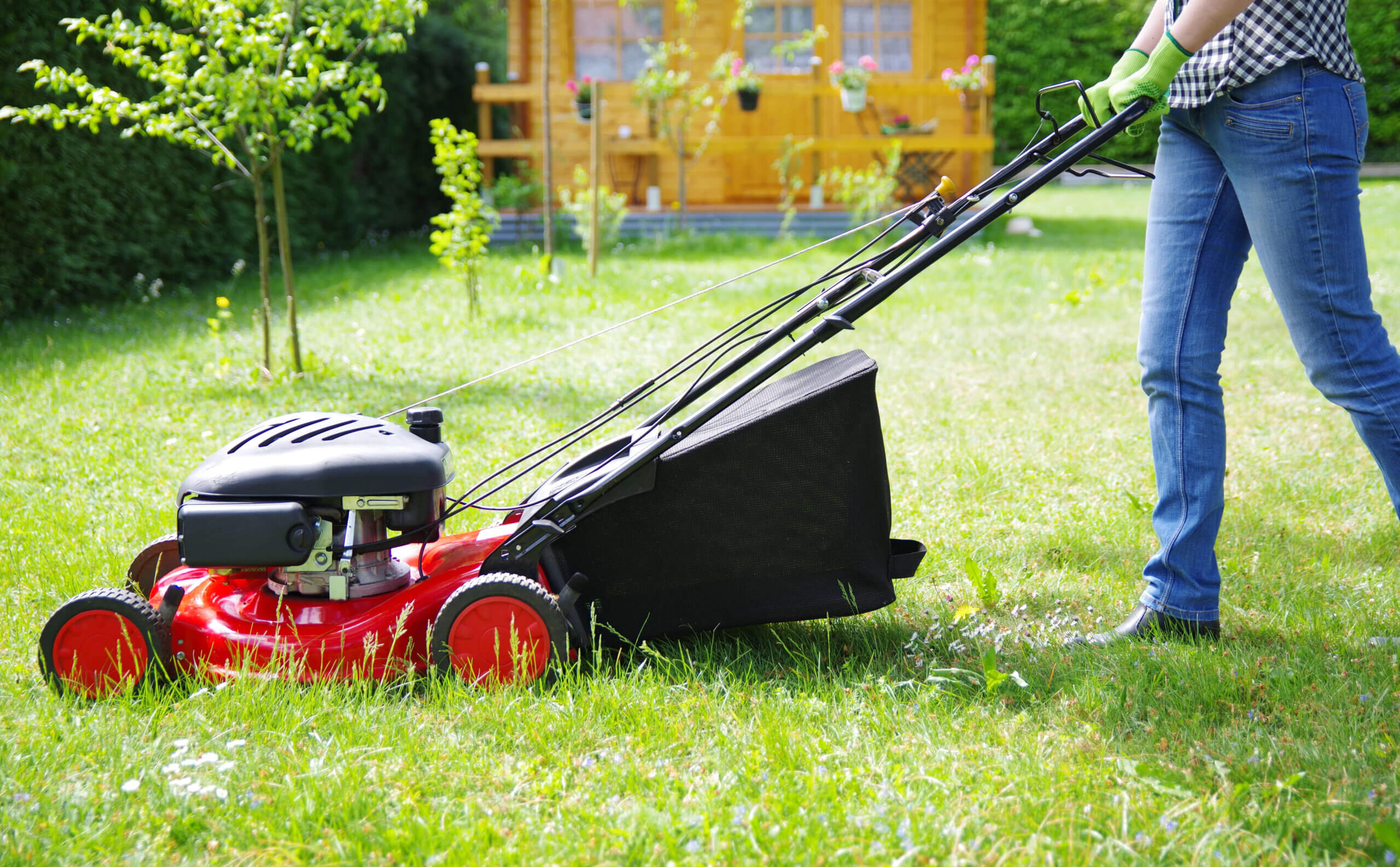 Proper techniques to mow your lawn include time of day, watering, and patterns.