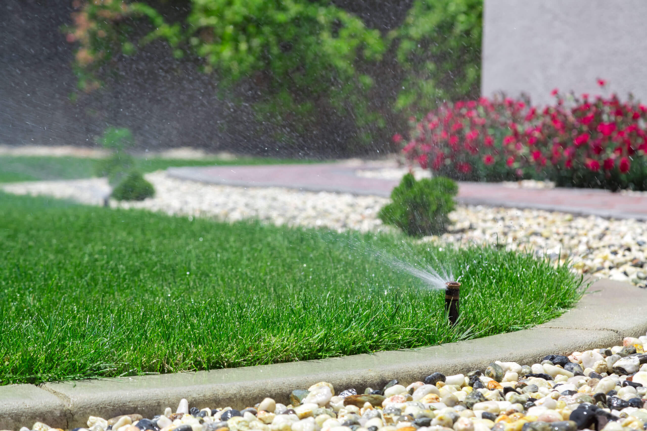 Water irrigation timing in Florida for home lawns.