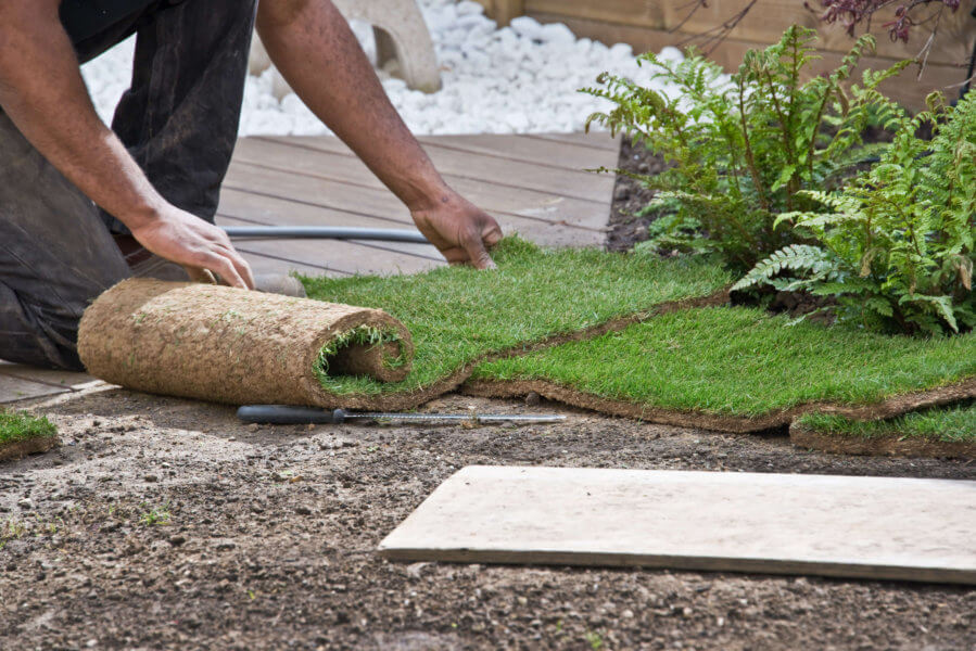 Tips for Installing Sod in Your Florida Lawn